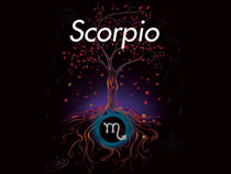 New Moon Meditation - Scorpio
